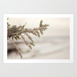 Icy Tamarack Art Print