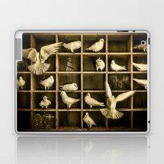 Pigeon Holed Laptop & iPad Skin