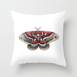 Moth - HYALOPHORA GLOVERI - Glover's silk moth   Painting   Watercolour   Insect Throw Pillow