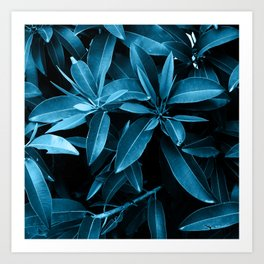 Exotic Blue II Art Print