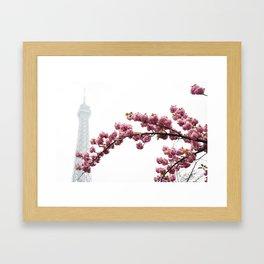 Cherry blossoms in Paris Framed Art Print