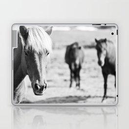 B&W horses Laptop & iPad Skin