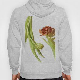 Bud & Bloom Hoody