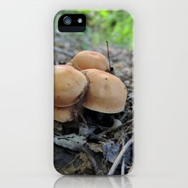 Roadside iPhone Case