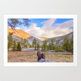 Little Yosemite Valley Art Print