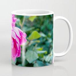 Fuchsia Roses Coffee Mug
