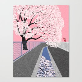 Cherry blossoms by canal Canvas Print