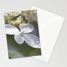 4 petal flower Stationery Cards