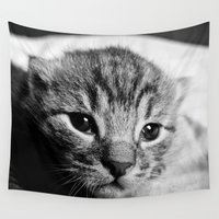 kitten Wall Tapestries featuring Kitten by Renata's Photobox