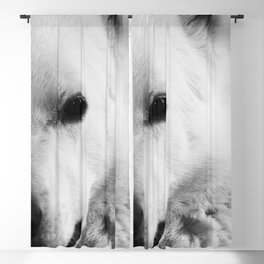 White German Shepherd Blackout Curtain