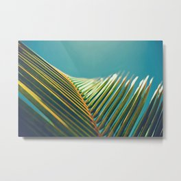 Palm Leaves in the Sun Metal Print