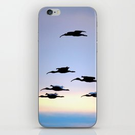 Evening Flight iPhone Skin