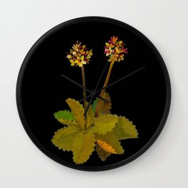 Saxifragia Nivalis Mary Delany Floral Paper Collage Delicate Vintage Flowers Wall Clock