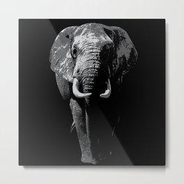 Elephant Africa Lover Safari Gift Idea Motif Metal Print