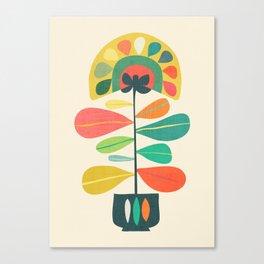 Fan Flower Canvas Print