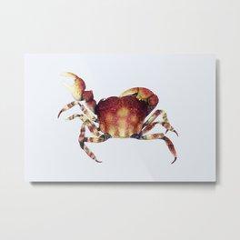 Crab watercolor illustration Metal Print