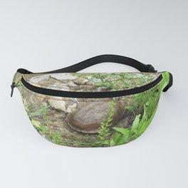 Creekside turtle Fanny Pack