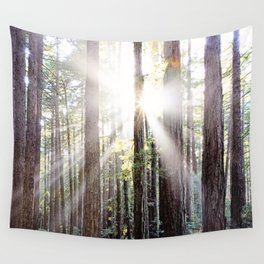 Sunburst Through the Redwoods Wall Tapestry