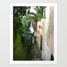 Sintra: Orange Tree Art Print