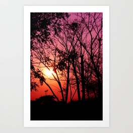 Pinky Sunset Art Print