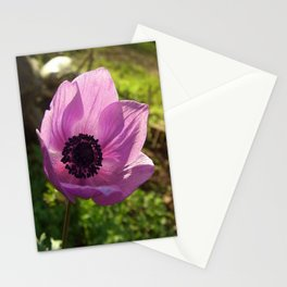 One Delicate Purple Anemone Coronaria Flower Stationery Cards