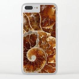 Ammonite Clear iPhone Case