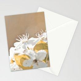 Floral 32 #flower Stationery Cards