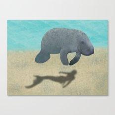Manatee Shadow Canvas Print
