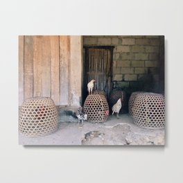 roosters in a row 2 Metal Print