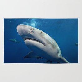 Lemon Sharks Rug