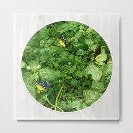 Green Paradise Metal Print