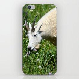 Mountain Goat Among Wildflowers iPhone Skin