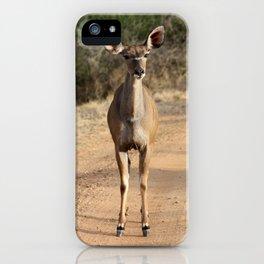 Kudu roadblock iPhone Case