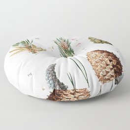 Swiss pine Pinus cembra and Red pine Pinus resinosafrom Traite des Arbres et Arbustes que lon cultiv Floor Pillow