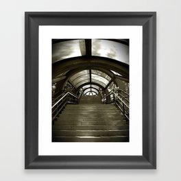 Elephant Stairs Framed Art Print