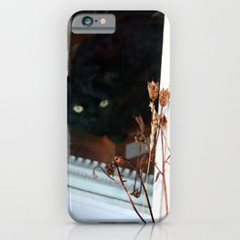 Come Inside Silly Human iPhone Case