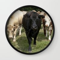 cows Wall Clocks featuring Cows by Rachel's Pet Portraits