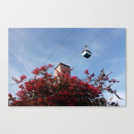 High Above Blooms Canvas Print