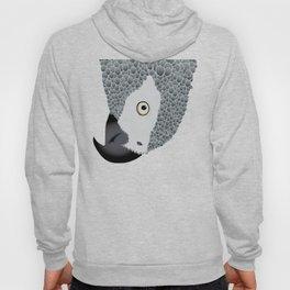 African Grey Parrot Hoody
