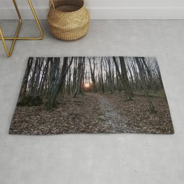 Turn Right at the Setting Winter Sun Rug