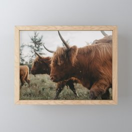 Together We Rise (Highland Cows) Framed Mini Art Print
