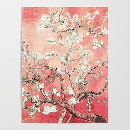 Van Gogh Almond Blossoms : Peach Poster