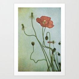 Poppy Dance II Art Print