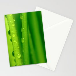 Green grass  32 Stationery Cards
