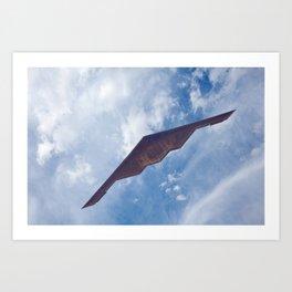 Stealth Bomber Art Print