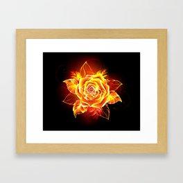 Blooming Fire Rose Framed Art Print
