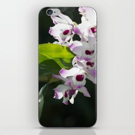 Orchid pattern iPhone Skin