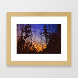 Georgia Woods  Framed Art Print