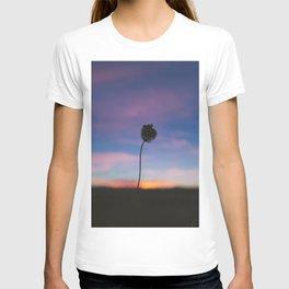 Singular T-shirt