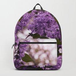 Purple lilacs Backpack